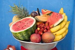 Nutrició i Alimentació